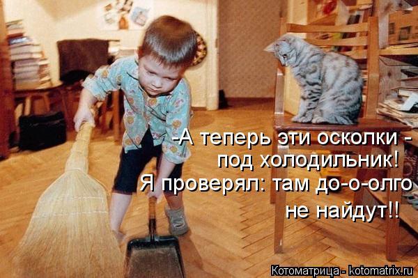 Котоматрица: -А теперь эти осколки -  под холодильник! Я проверял: там до-о-олго не найдут!!