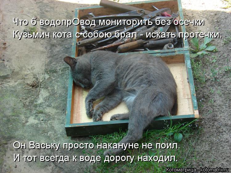 Котоматрица: Что б водопрОвод мониторить без осечки Кузьмич кота с собою брал - искать протечки. И тот всегда к воде дорогу находил. Он Ваську просто нака