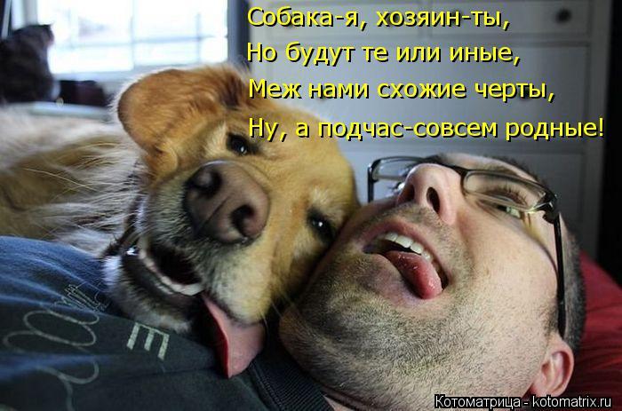 Котоматрица: Собака-я, хозяин-ты, Но будут те или иные, Меж нами схожие черты, Ну, а подчас-совсем родные!