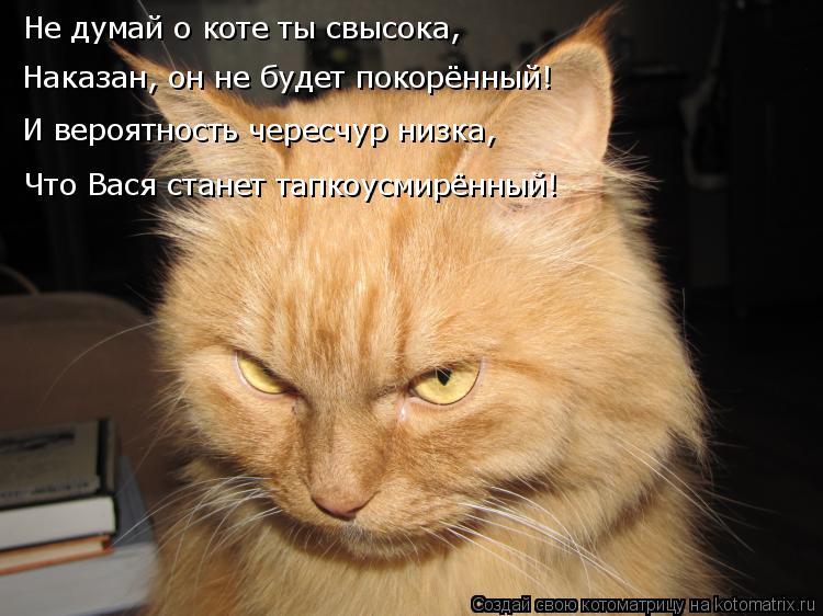 Котоматрица: Не думай о коте ты свысока, Наказан, он не будет покорённый! И вероятность чересчур низка, Что Вася станет тапкоусмирённый!