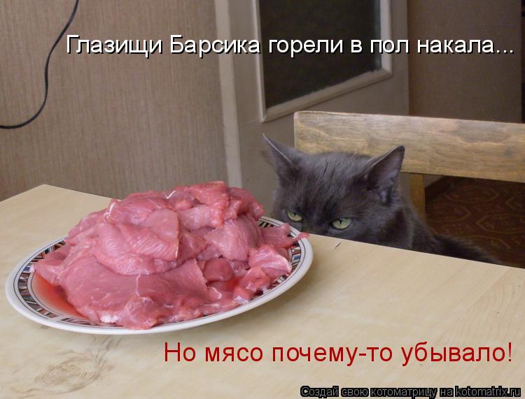 Котоматрица: Глазищи Барсика горели в пол накала...  Но мясо почему-то убывало!