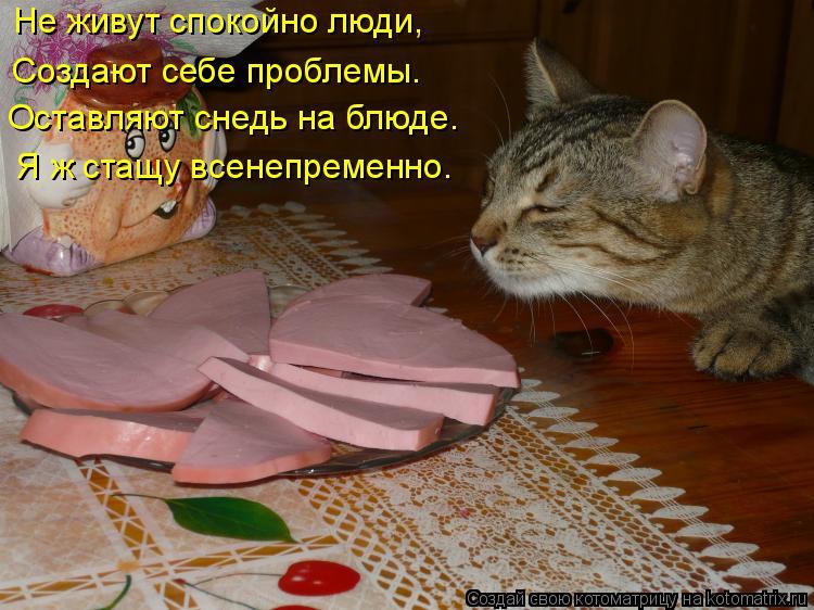 Котоматрица: Не живут спокойно люди, Создают себе проблемы. Оставляют снедь на блюде. Я ж стащу всенепременно.