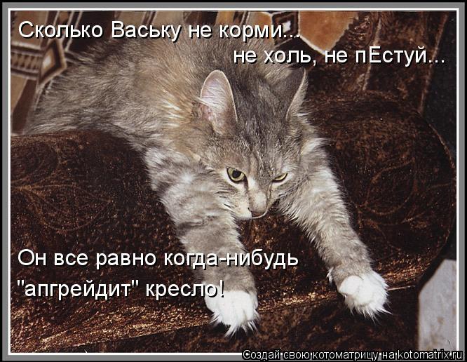 """Котоматрица: Сколько Ваську не корми...  не холь, не пЕстуй... Он все равно когда-нибудь """"апгрейдит"""" кресло!"""
