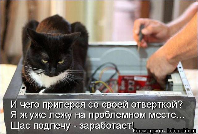 Котоматрица: И чего приперся со своей отверткой? Я ж уже лежу на проблемном месте... Щас подлечу - заработает!