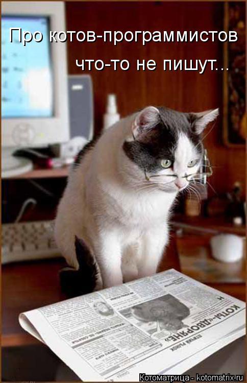 Котоматрица: Про котов-программистов что-то не пишут...