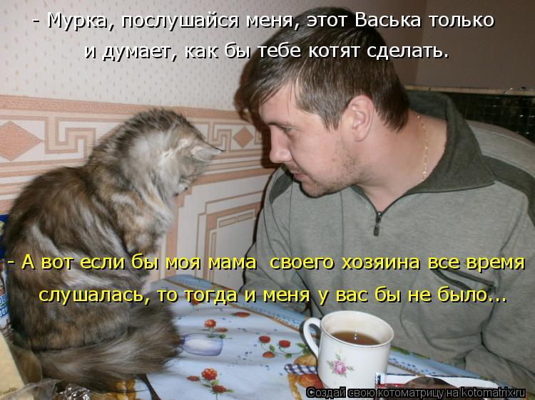 Котоматрица: - Мурка, послушайся меня, этот Васька только  и думает, как бы тебе котят сделать. - А вот если бы моя мама  своего хозяина все время слушалась,
