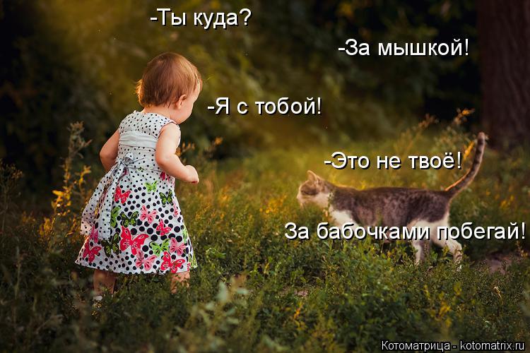 Котоматрица: -Ты куда? -За мышкой! -Я с тобой! -Это не твоё! За бабочками побегай!