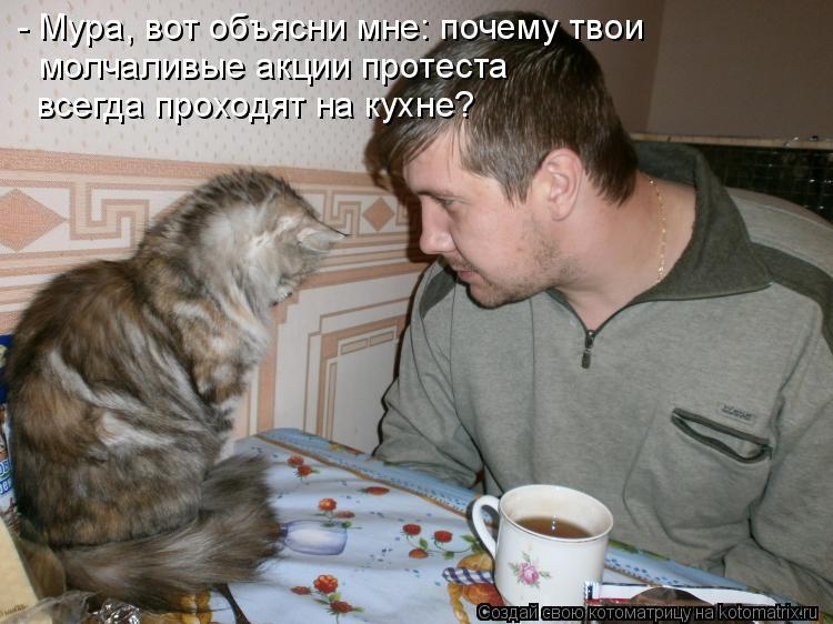 Котоматрица: - Мура, вот объясни мне: почему твои  молчаливые акции протеста  всегда проходят на кухне?