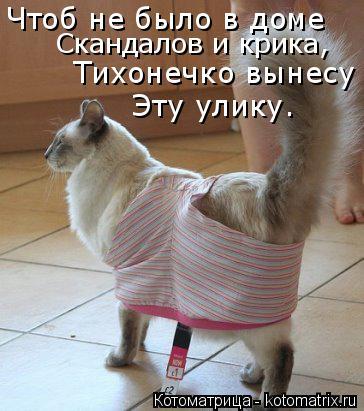 Котоматрица: Чтоб не было в доме Скандалов и крика, Тихонечко вынесу  Эту улику.