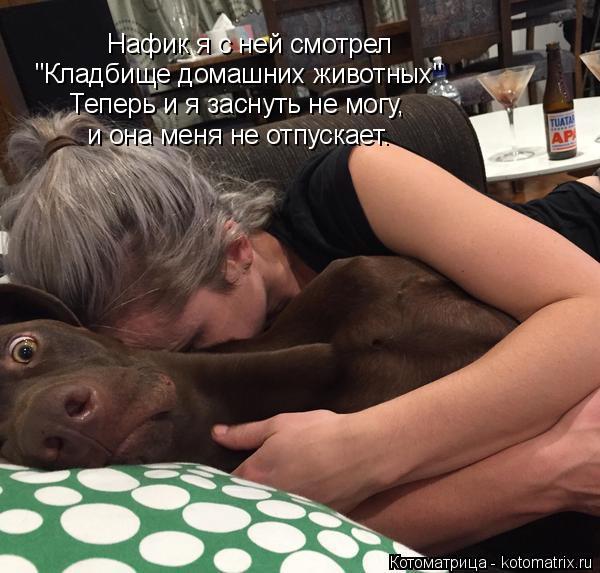 """Котоматрица: Нафик я с ней смотрел """"Кладбище домашних животных"""" Теперь и я заснуть не могу, и она меня не отпускает."""