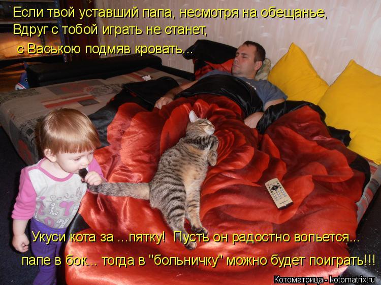Котоматрица: Если твой уставший папа, несмотря на обещанье, Вдруг с тобой играть не станет, с Ваською подмяв кровать... Укуси кота за ...пятку!  Пусть он рад