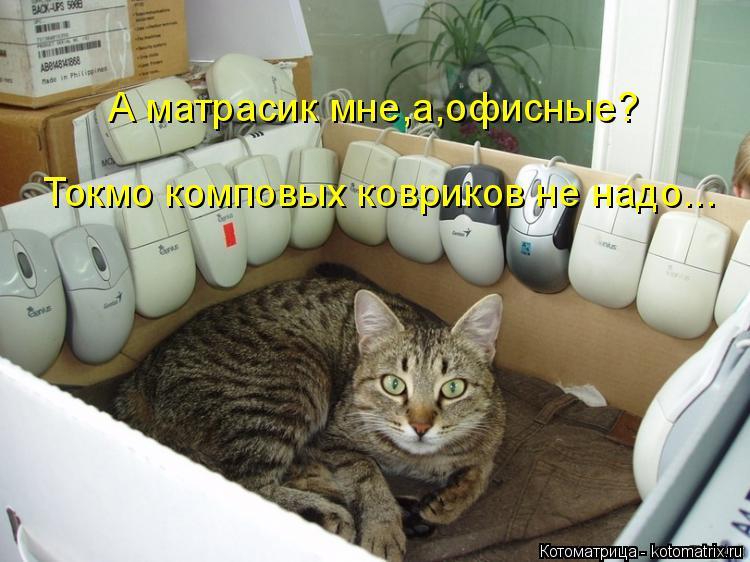 Котоматрица: А матрасик мне,а,офисные? Токмо комповых ковриков не надо...