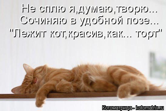 """Котоматрица: Не сплю я,думаю,творю... Сочиняю в удобной позе... """"Лежит кот,красив,как... торт"""""""