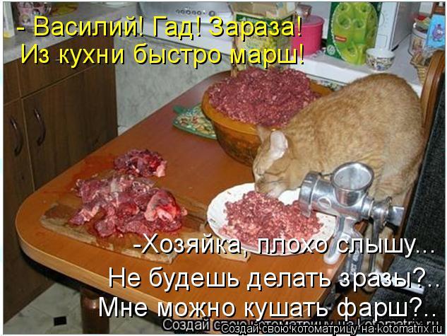 Котоматрица: - Василий! Гад! Зараза! Из кухни быстро марш! -Хозяйка, плохо слышу... Не будешь делать зразы?.. Мне можно кушать фарш?..