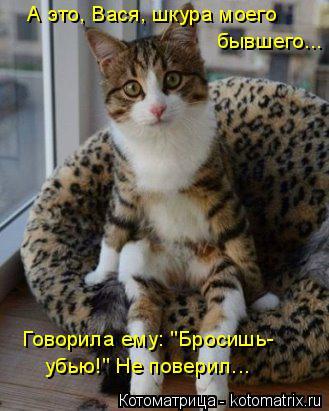 """Котоматрица: А это, Вася, шкура моего  бывшего...  убью!"""" Не поверил... Говорила ему: """"Бросишь-"""