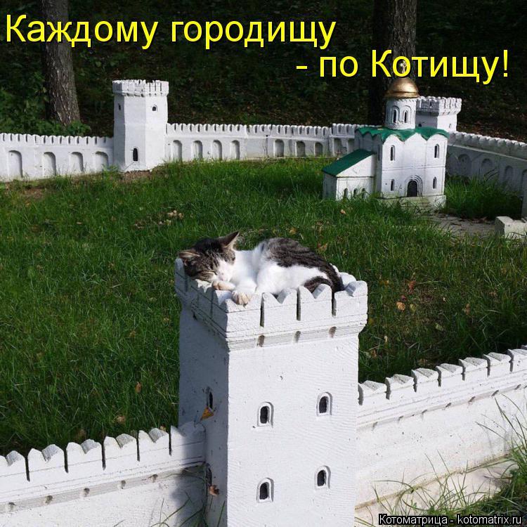 Котоматрица: - по Котищу! Каждому городищу