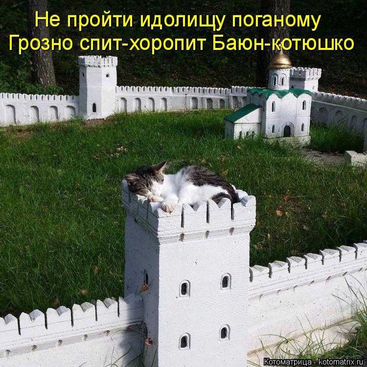 Котоматрица: Не пройти идолищу поганому Грозно спит-хоропит Баюн-котюшко