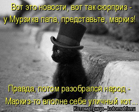 Котоматрица: Вот это новости, вот так сюрприз -  у Мурзика папа, представьте, маркиз!  Правда, потом разобрался народ -  Маркиз-то вполне себе уличный кот...