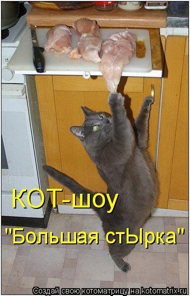 """Котоматрица: КОТ-шоу """"Большая стЫрка"""""""