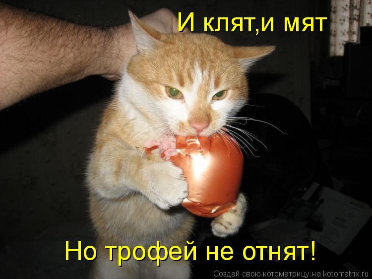 Котоматрица: И клят,и мят Но трофей не отнят!