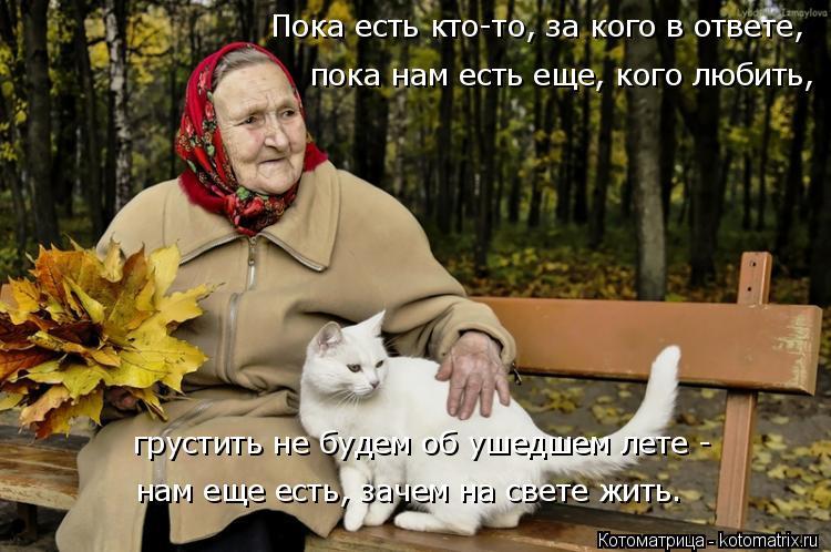 Котоматрица: Пока есть кто-то, за кого в ответе, грустить не будем об ушедшем лете -  нам еще есть, зачем на свете жить. пока нам есть еще, кого любить,