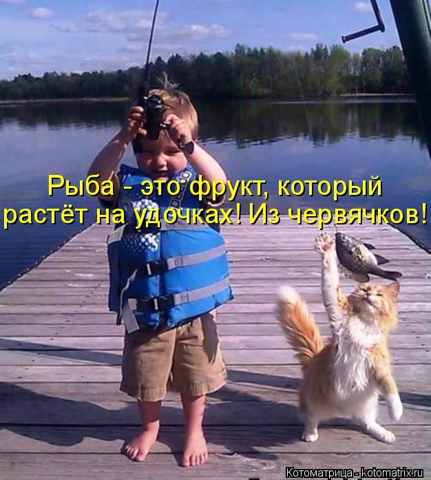 Котоматрица: Рыба - это фрукт, который  растёт на удочках! Из червячков!