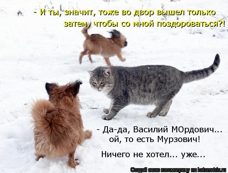 Котоматрица: - И ты, значит, тоже во двор вышел только - Да-да, Василий МОрдович...  ой, то есть Мурзович! Ничего не хотел... уже... затем, чтобы со мной поздоров