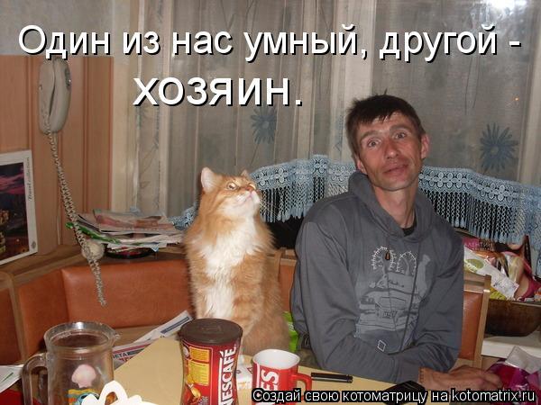 Котоматрица: Один из нас умный, другой -  хозяин.