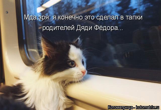 Котоматрица: Мда,зря  я конечно это сделал в тапки родителей Дяди Фёдора...