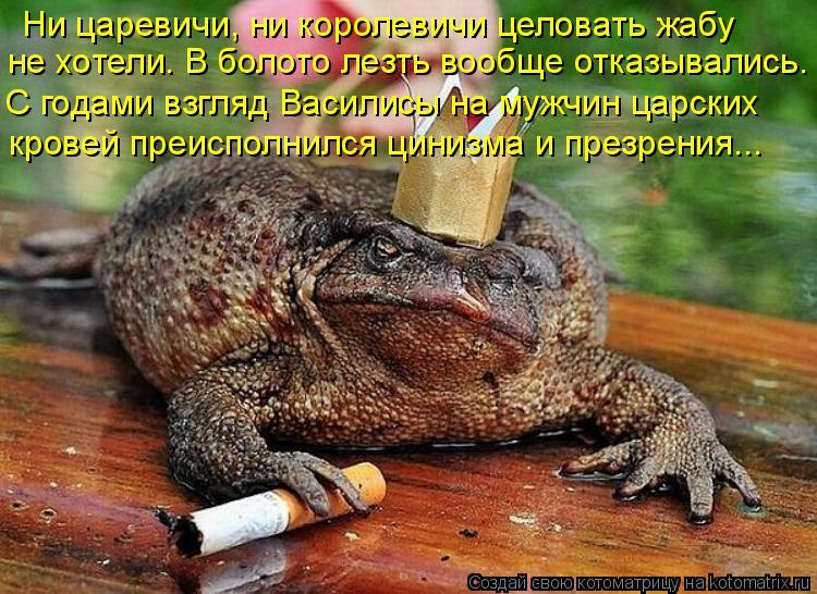 Котоматрица: Ни царевичи, ни королевичи целовать жабу  не хотели. В болото лезть вообще отказывались. С годами взгляд Василисы на мужчин царских  кровей