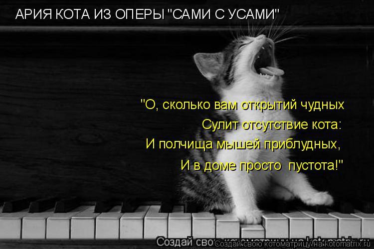 """Котоматрица: АРИЯ КОТА ИЗ ОПЕРЫ """"САМИ С УСАМИ"""" """"О, сколько вам открытий чудных Сулит отсутствие кота: И полчища мышей приблудных,  И в доме просто  пустота!"""""""