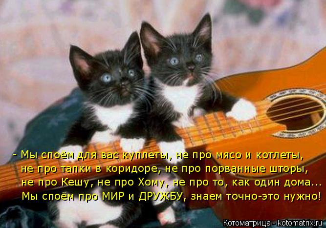 Котоматрица: - Мы споём для вас куплеты, не про мясо и котлеты, не про тапки в коридоре, не про порванные шторы, не про Кешу, не про Хому, не про то, как один д