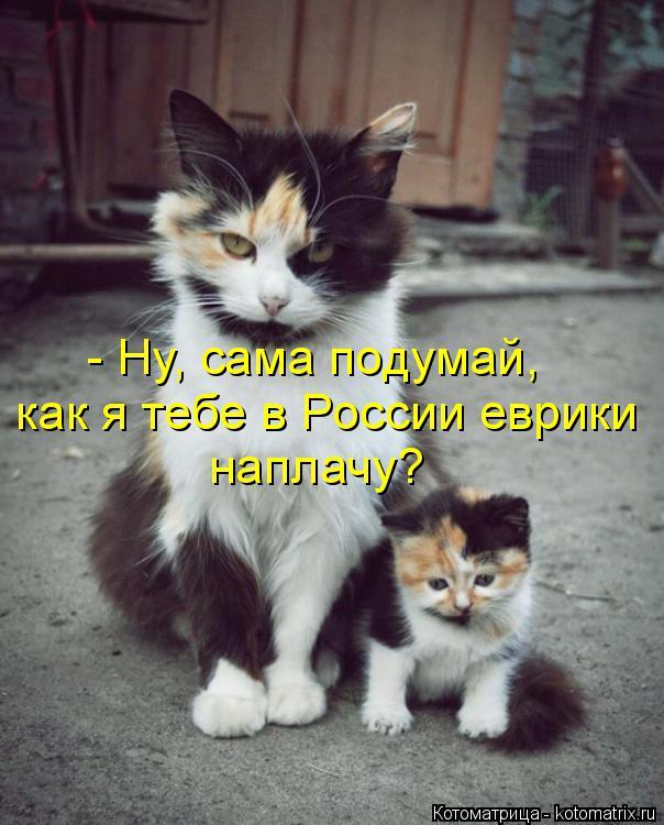 Котоматрица: - Ну, сама подумай, как я тебе в России еврики наплачу?