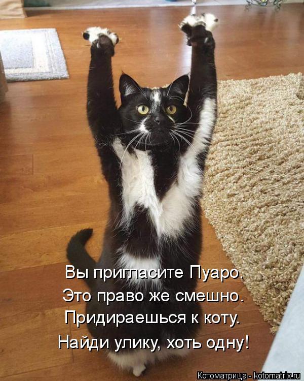 Котоматрица: Вы пригласите Пуаро. Это право же смешно. Придираешься к коту. Найди улику, хоть одну!