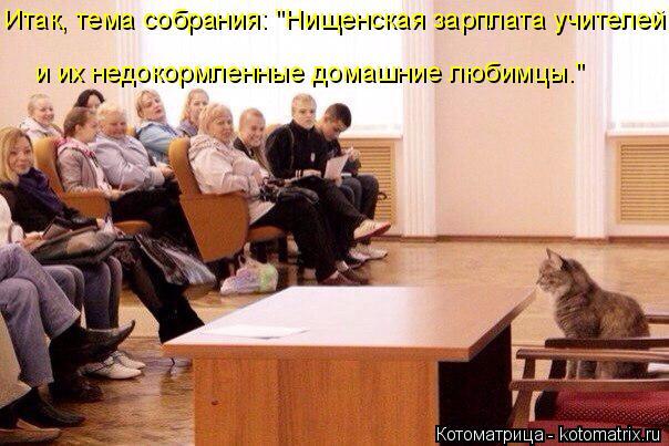 """Котоматрица: Итак, тема собрания: """"Нищенская зарплата учителей и их недокормленные домашние любимцы."""""""