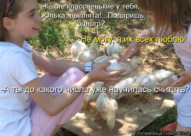 Котоматрица: -Какие классненькие у тебя,   Юлька, цыплята!...Подаришь одного? -Не могу, я их всех люблю!  -А ты до какого числа уже научилась считать?