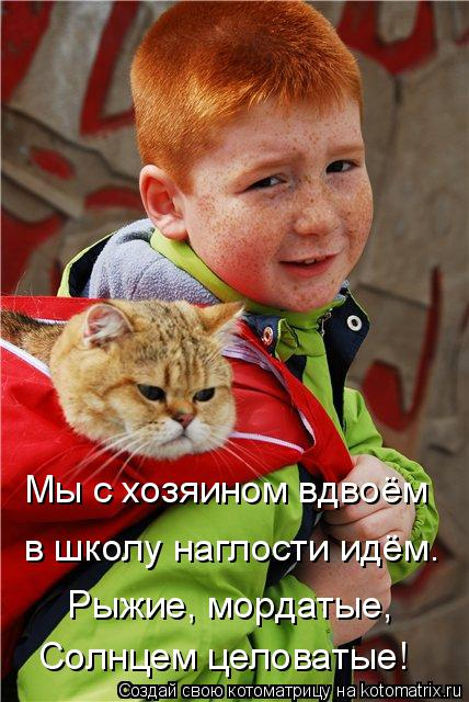 Котоматрица: Мы с хозяином вдвоём в школу наглости идём. Рыжие, мордатые, Солнцем целоватые!