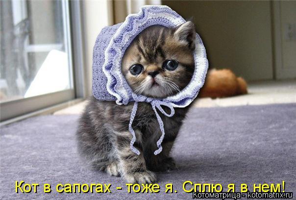 Котоматрица: Кот в сапогах - тоже я. Сплю я в нем!