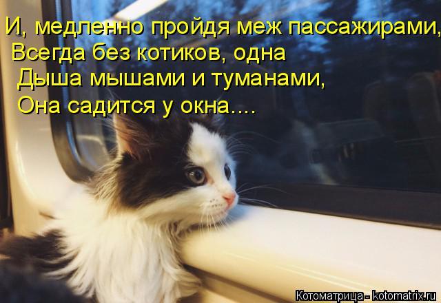Котоматрица: И, медленно пройдя меж пассажирами,   Всегда без котиков, одна   Дыша мышами и туманами,  Она садится у окна....