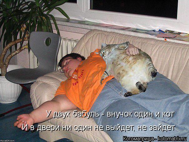 Котоматрица: У двух бабуль - внучок один и кот  И в двери ни один не выйдет, не зайдет