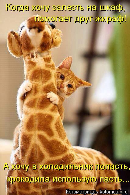 Котоматрица: Когда хочу залезть на шкаф, помогает друг-жираф! А хочу в холодильник попасть, крокодила использую пасть...