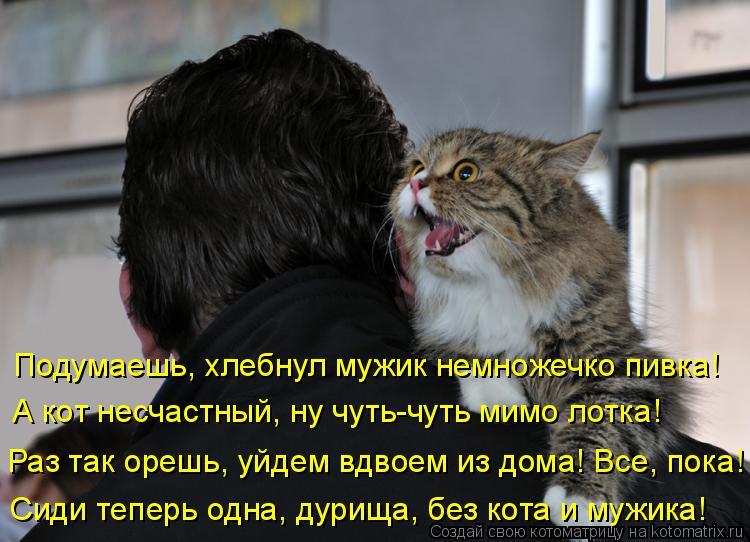 Котоматрица: Подумаешь, хлебнул мужик немножечко пивка! А кот несчастный, ну чуть-чуть мимо лотка! Раз так орешь, уйдем вдвоем из дома! Все, пока! Сиди тепе