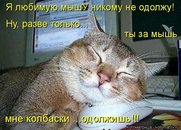 Котоматрица: Я любимую мышУ никому не одолжу! Ну, разве только...  ты за мышь мне колбаски ...одолжишь!!!