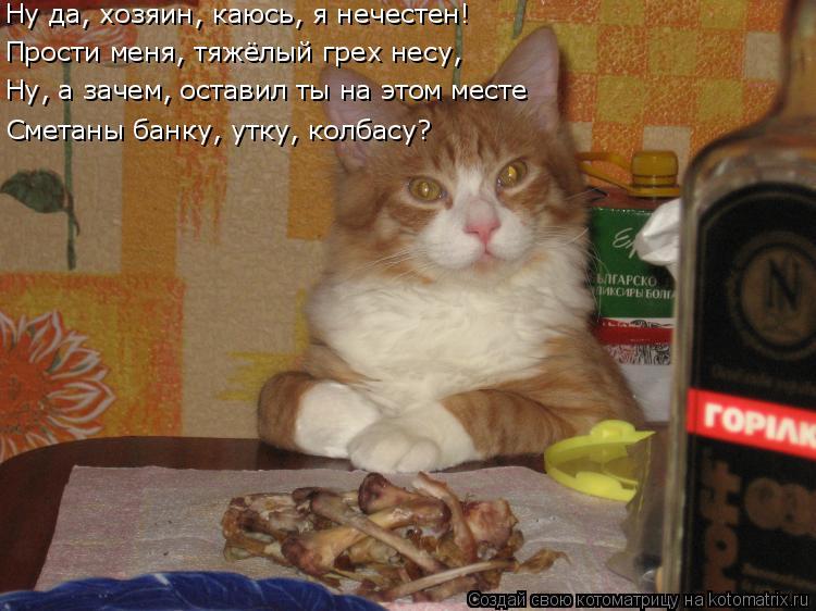 Котоматрица: Ну да, хозяин, каюсь, я нечестен! Прости меня, тяжёлый грех несу, Ну, а зачем, оставил ты на этом месте Сметаны банку, утку, колбасу?