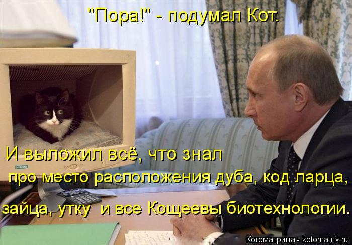 """Котоматрица: """"Пора!"""" - подумал Кот. И выложил всё, что знал  про место расположения дуба, код ларца,  зайца, утку  и все Кощеевы биотехнологии."""