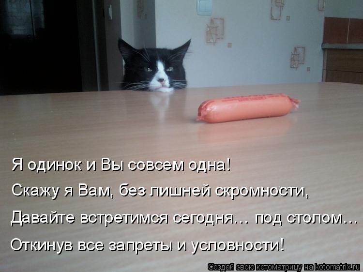 Котоматрица: Я одинок и Вы совсем одна! Скажу я Вам, без лишней скромности, Давайте встретимся сегодня… под столом… Откинув все запреты и условности!