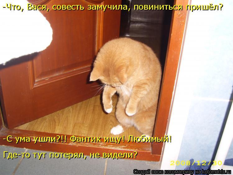 Котоматрица: -Что, Вася, совесть замучила, повиниться пришёл? -С ума ушли?!! Фантик ищу! Любимый! Где-то тут потерял, не видели?