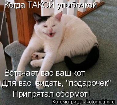 """Котоматрица: Когда ТАКОЙ улыбочкой  Встечает вас ваш кот, Для вас, видать, """"подарочек"""" Припрятал обормот!"""
