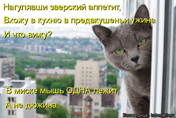 Котоматрица: Нагулявши зверский аппетит, Вхожу в кухню в предвкушеньи ужина И что вижу? В миске мышь ОДНА лежит, А не дюжина.