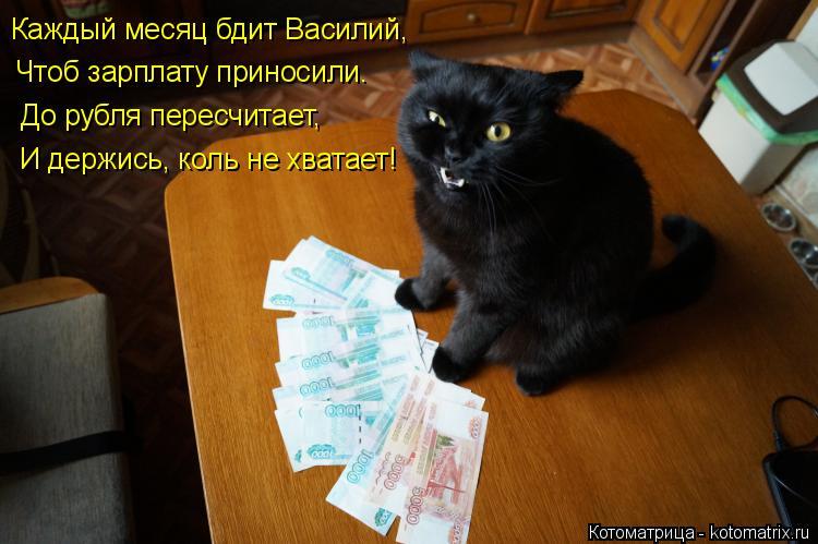Котоматрица: Каждый месяц бдит Василий, Чтоб зарплату приносили. До рубля пересчитает, И держись, коль не хватает!